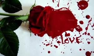 Роза и кровь