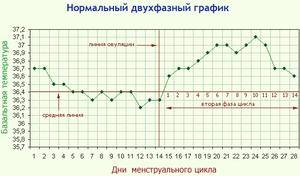 Образец графика